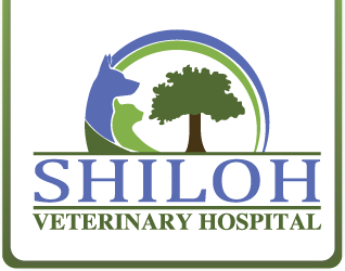 Shiloh Veterinary Hospital